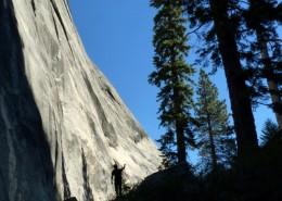 Yosemite-Taglio11-600x465