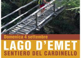 Cardinello locandina JPG ridotta